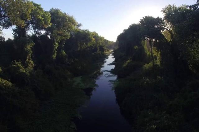 Steelhead Creek in Discovery Park Sacramento, Ca