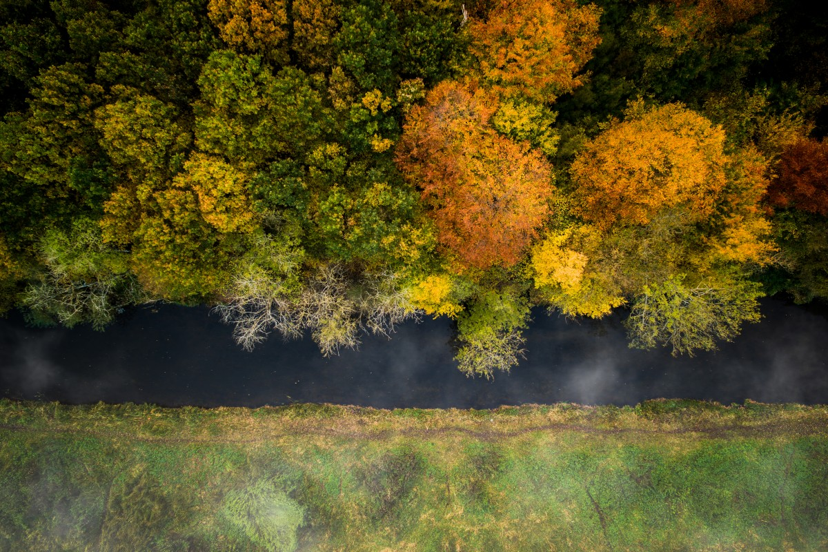Autumn by the river Susaa