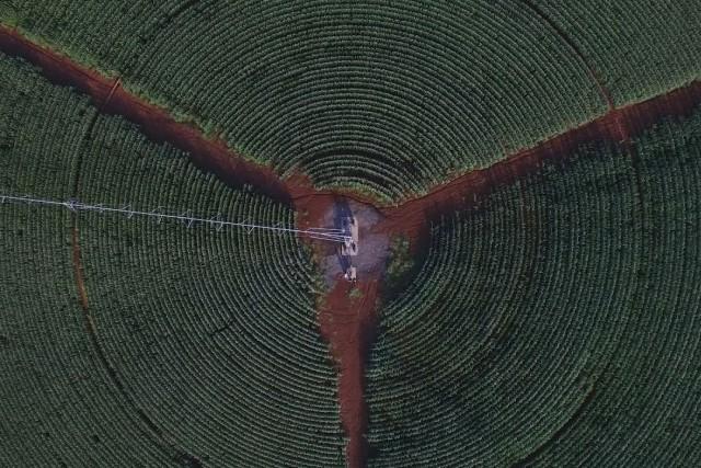 Round field, israel 4K
