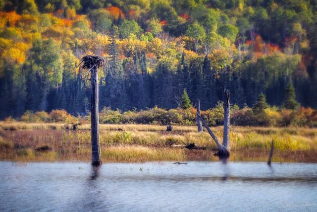Northern Ontario Canada