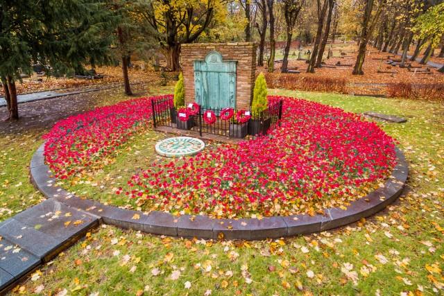 Prescot Field of Poppies