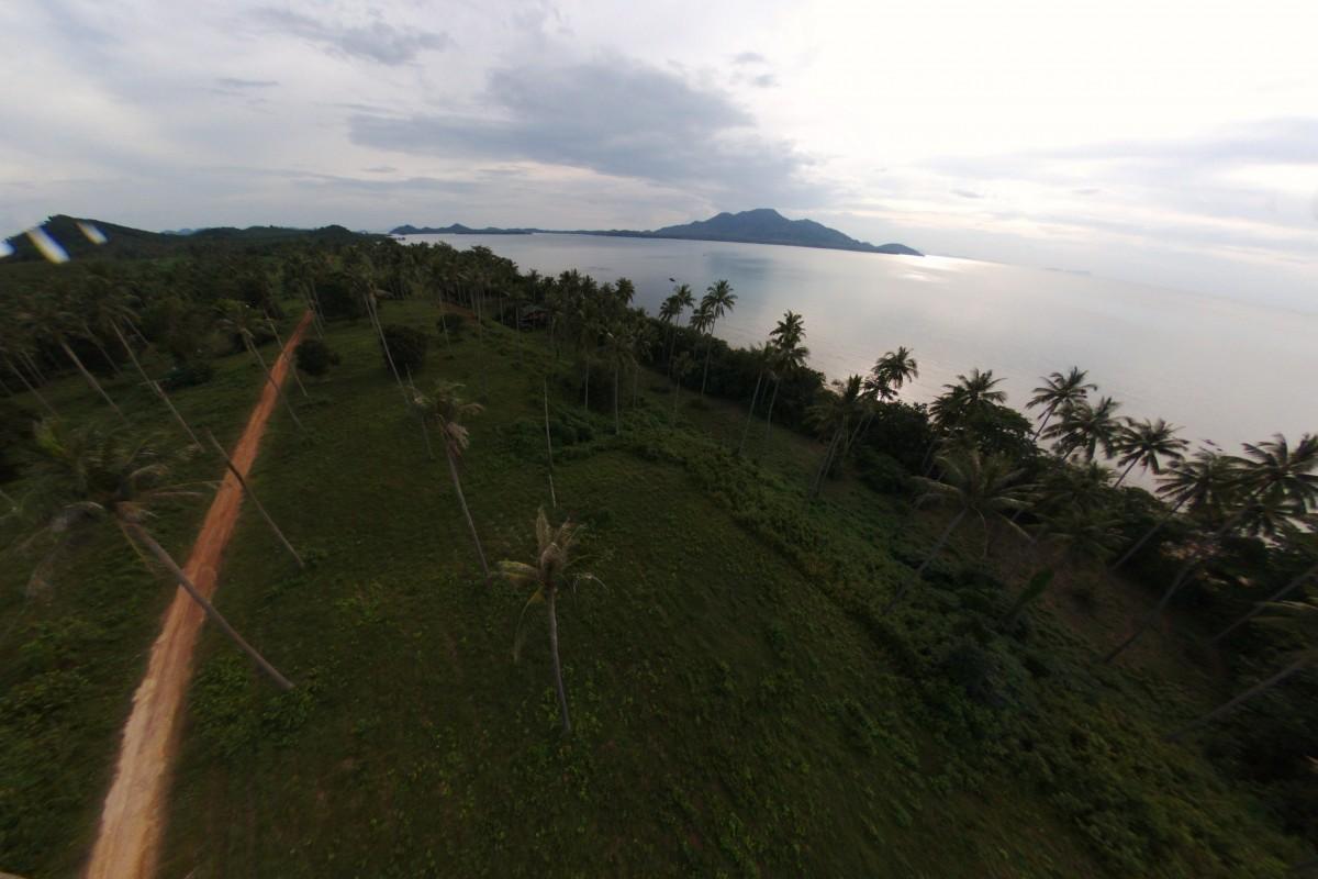 Coconut Grove, Koh Sriboya Island, Krabi, Thailand