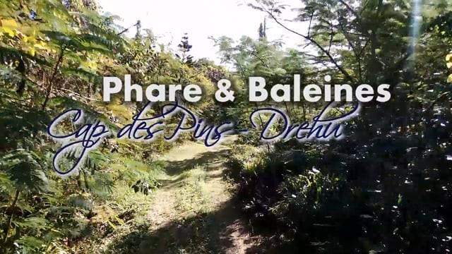 Cap des Pins, Lifou, Nouvelle-Calédonie