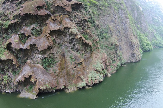 Christmas tree, Sumidero CAnyon, Chiapas, MX