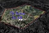 Las Vegas Ranch Prescott AZ 76 Acres for sale