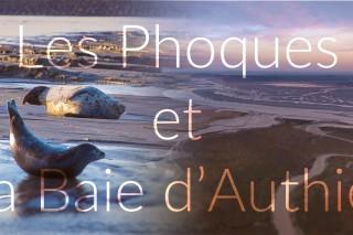 Authie Bay, France