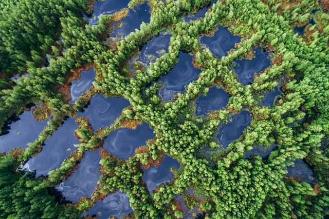 Peat Lake