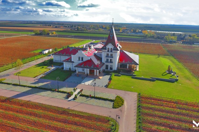 Winery Zvonko Bogdan