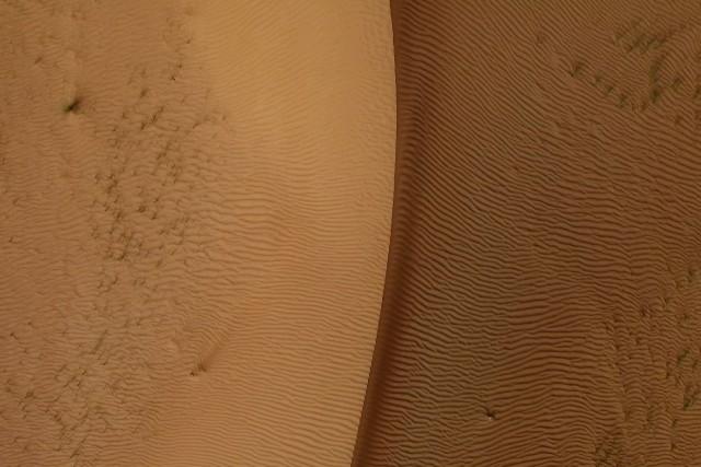 Shades of Sand Dunes