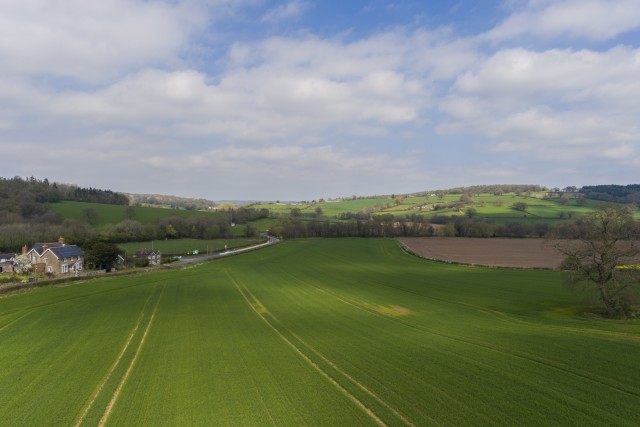 Famland Views