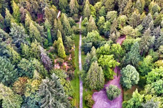 Lake sammamish and the washington arboretum