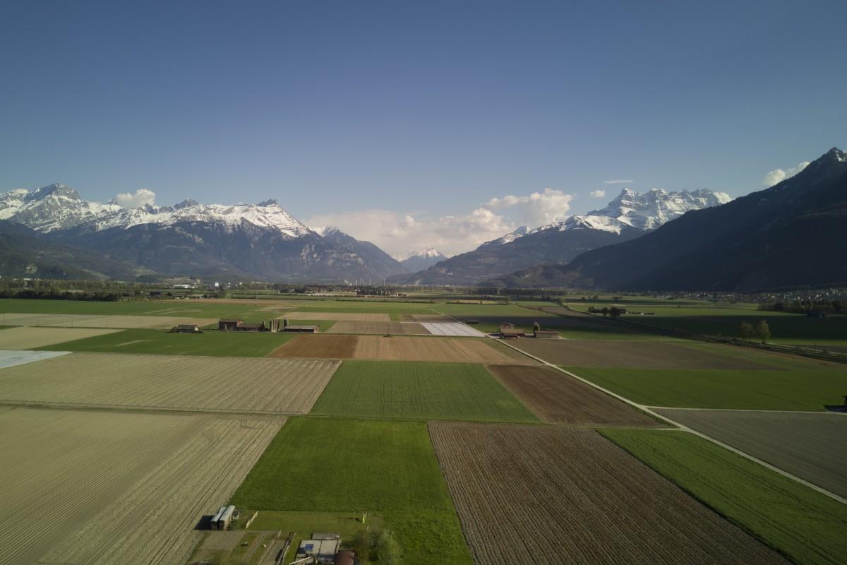 Vue sur les Alpes Vaudoise et Valaisanne (Suisse)