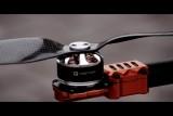 FlyingArms Trailer