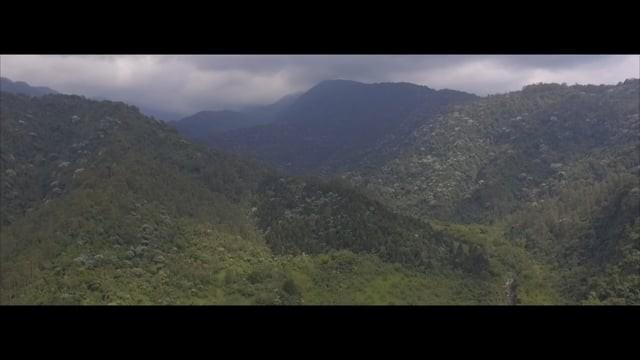 Risaralda – Colombia