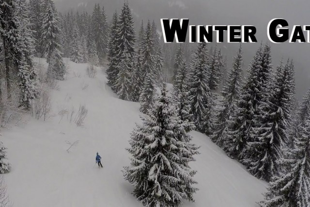 Winter Gates