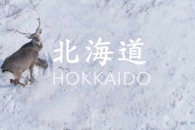 winter hokkaido in japan