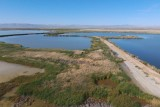 Salton Sea Wetlands