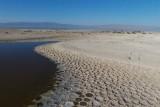 Salton Sea Tilapia Beds