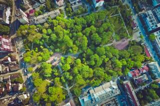 ivano-frankivsk park
