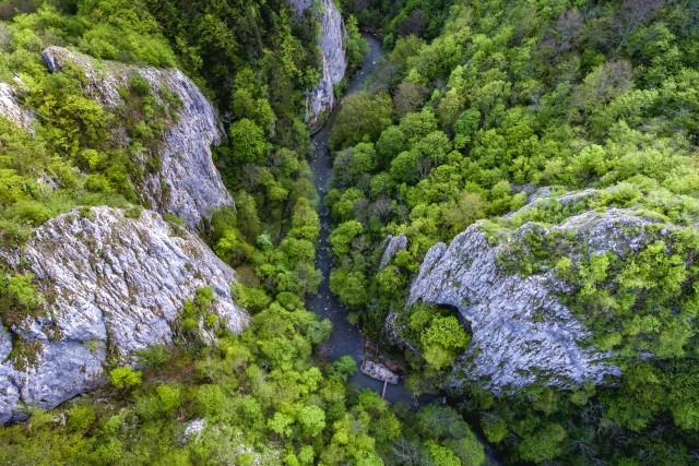 Varghisului Gorges, Transylvania, Romania