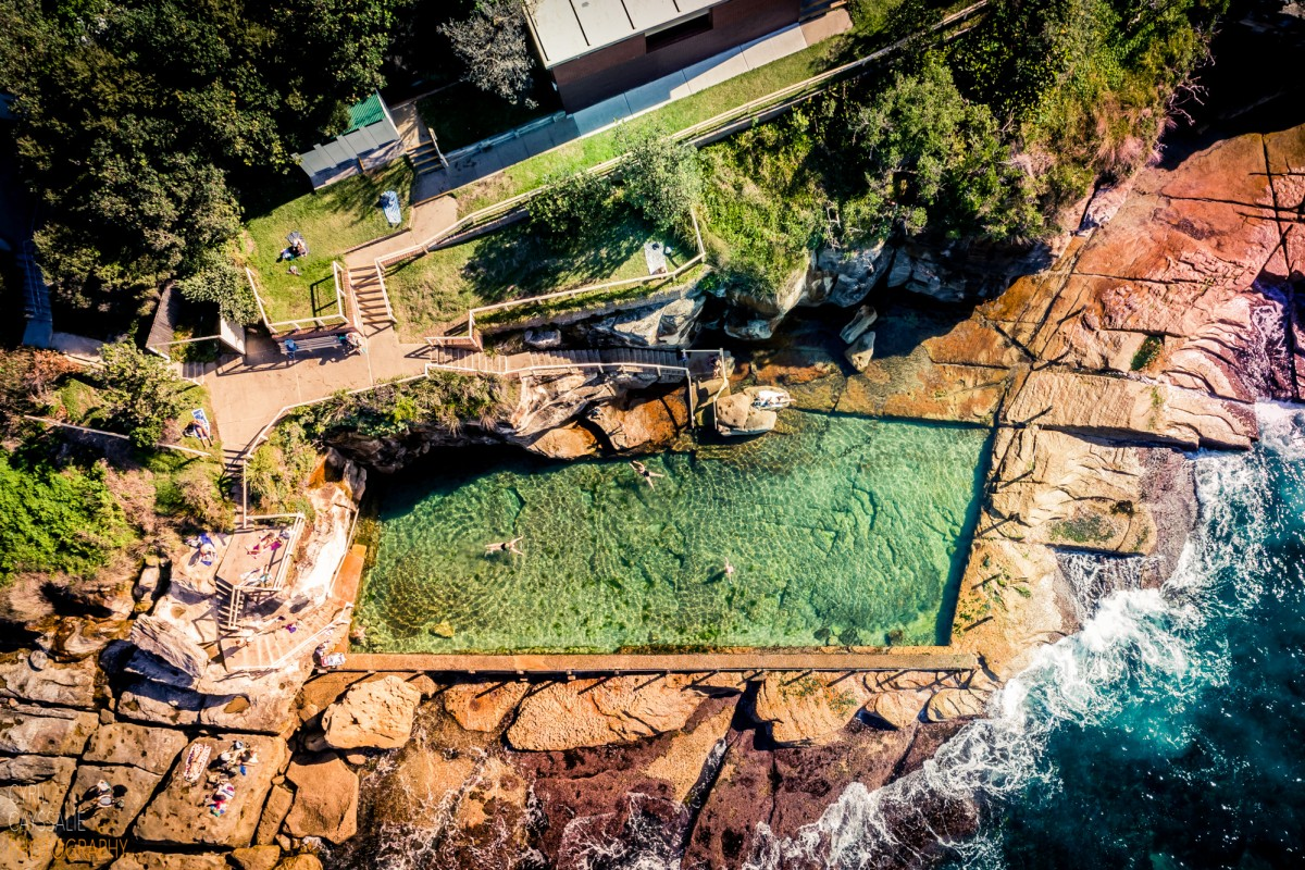 Mc Ivers Swimmers, Coogee