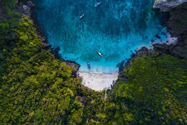 The Jungle Beach
