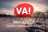 El vino en Valladolid