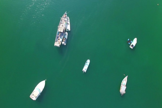Fishing Boats of Sharjah