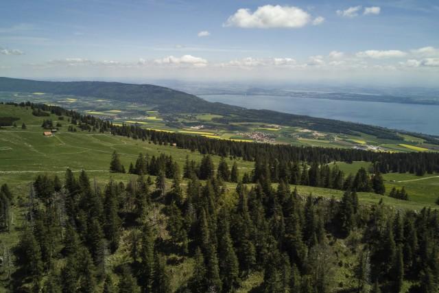 Lac de Neuchâtel depuis le Mont Racine (Suisse)