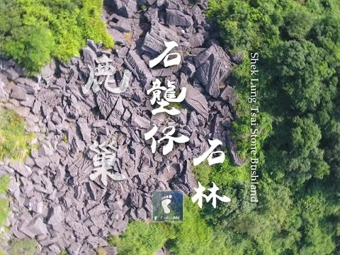 Shek Lung Tsai Stone Bushland, Sai Kung, Hong Kong