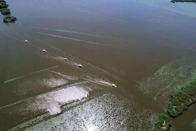 Tisza lake boats