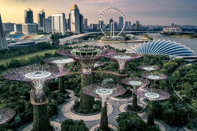 Super Trees @ Gardens by the Bay