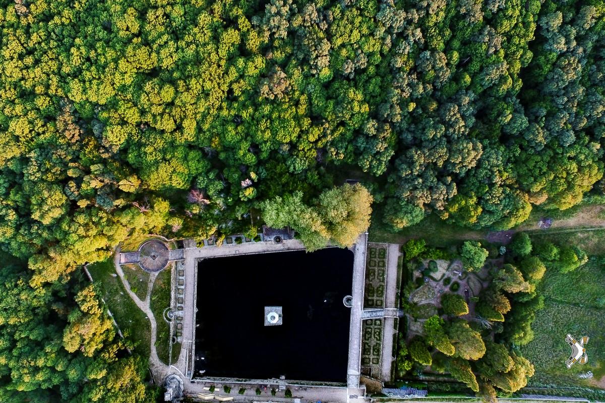 """Jardín """"El Bosque"""""""