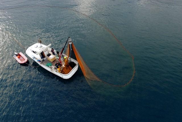 Scène de pêche à la senne devant Bastia