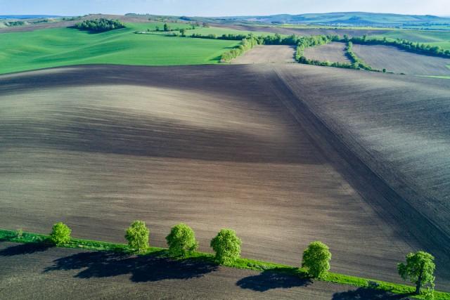 South Moravian landscapes