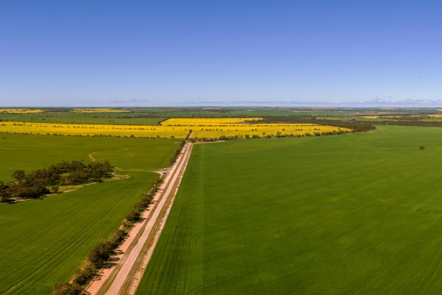 Eastern Fields of Perth 360 Panorama