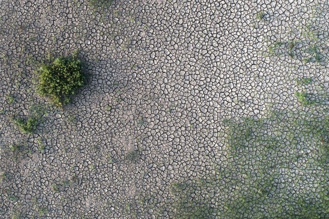Tessellated Mud Flats