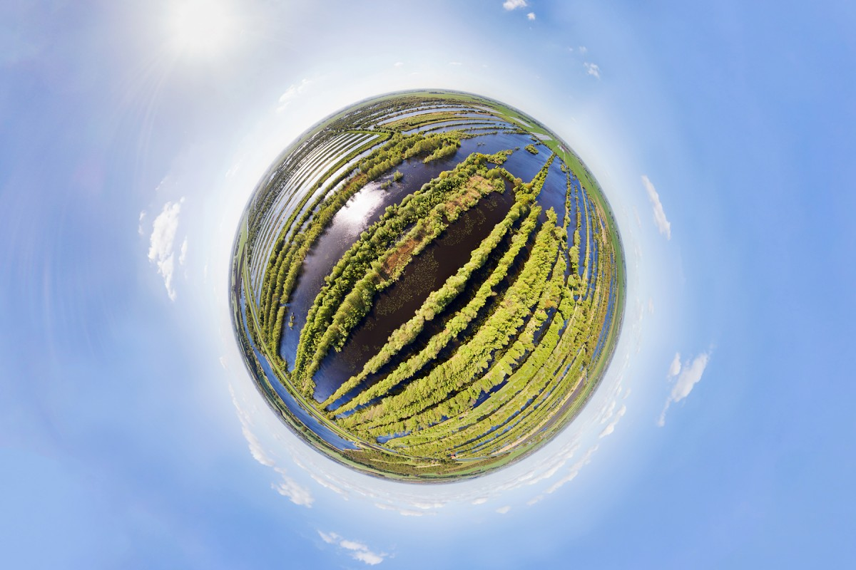 Wetland in 360 degrees, Netherlands