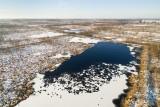 Frost in the moor