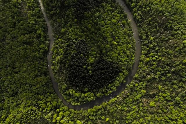 Amazonie – Aveyron : Terre de contrastes