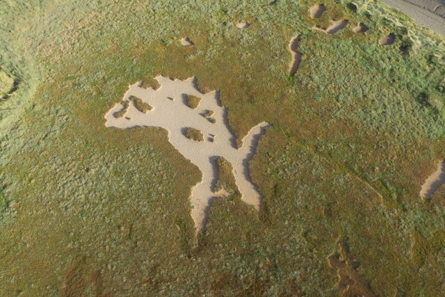 """Leaping beast"" in a swamp (fun shape from the sky), brittany, france"