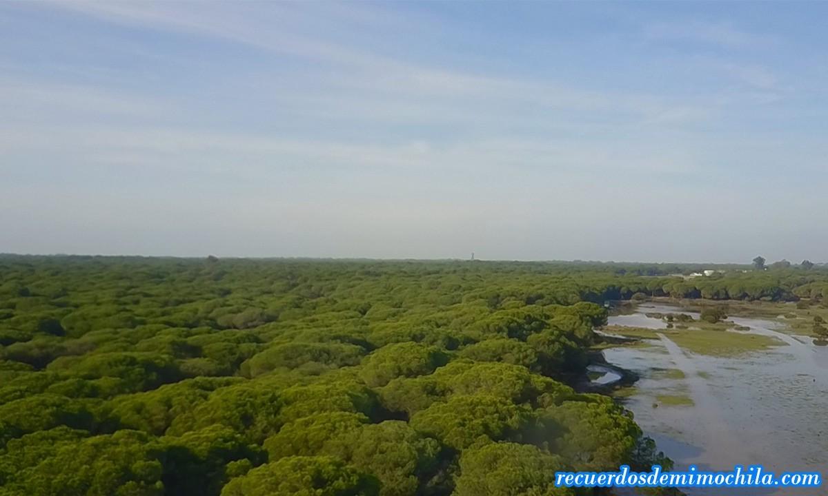 Parque Natural Doñana