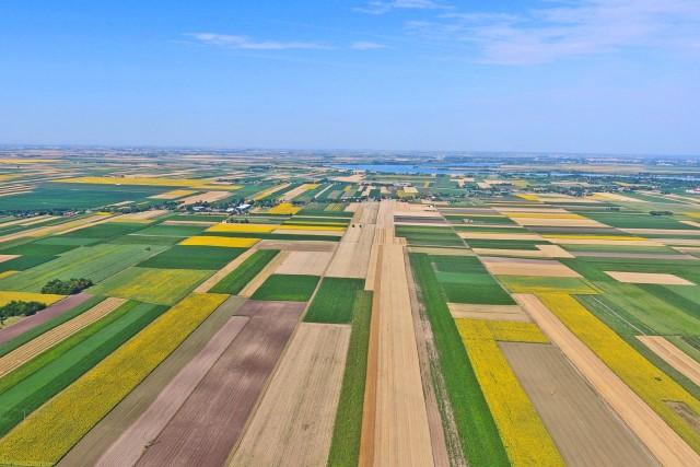 Flat land in region of Vojvodina