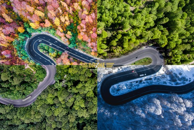 4 Seasons in 1 Image