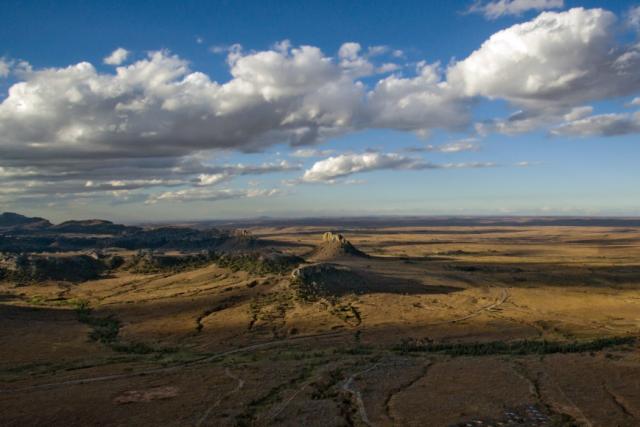Isalo Desert.
