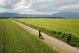 Le motard croisant la pèlerine (Motorcyclist crossing pilgrim woman) – Chemin St Jacques – Mont-Sion