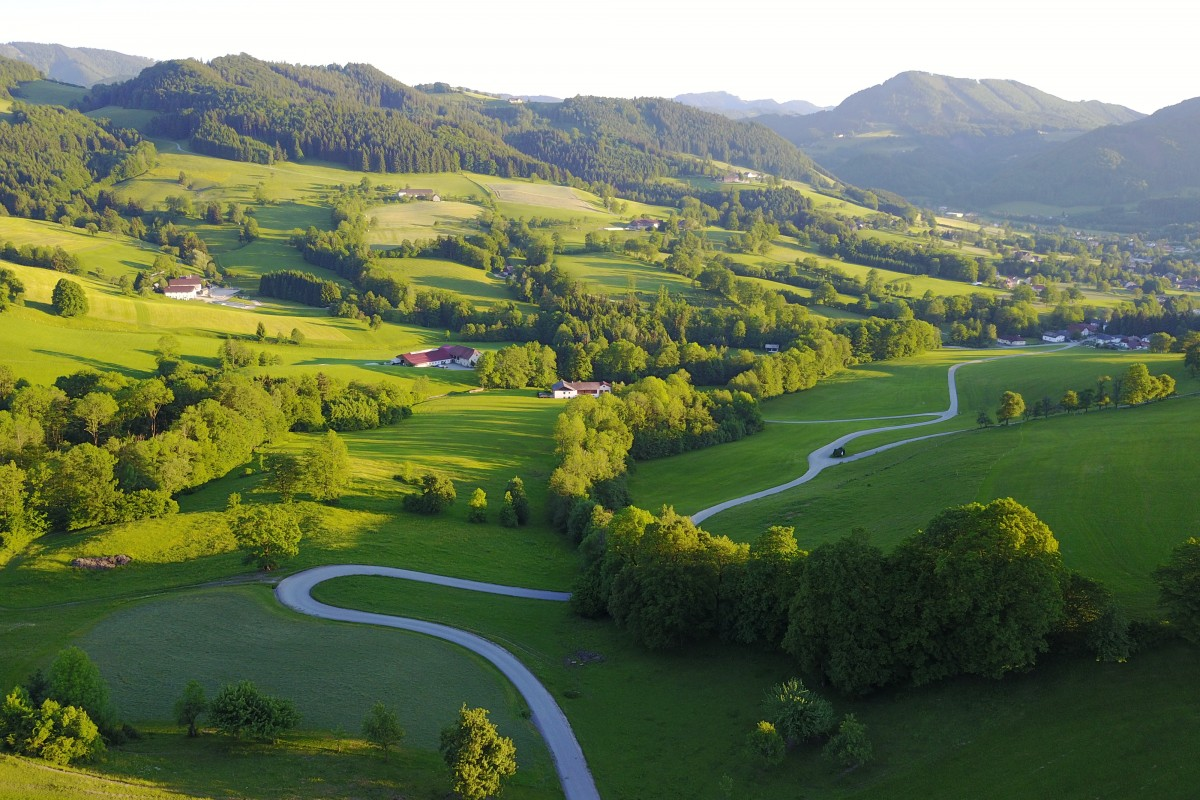 Curved Road, Austria