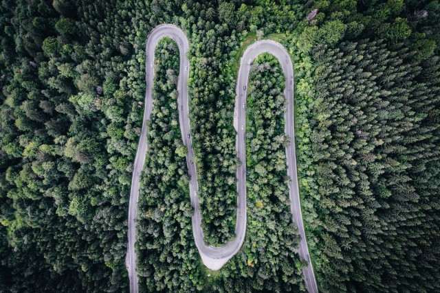 Infinite Road to Transylvania (10)