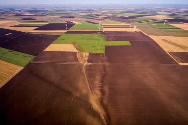 Agriculture in Dobrogea, Romania