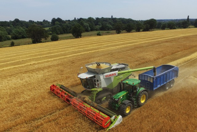 Harvest time, Hertford, UK